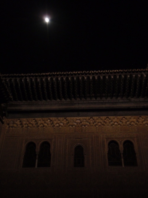 The Alhambra at night. Magestic.