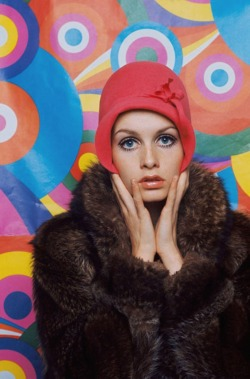 hollyhocksandtulips:  Twiggy