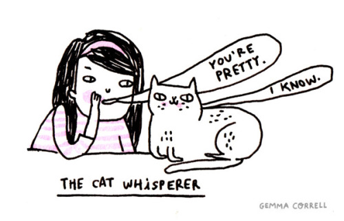 the cat whisperer