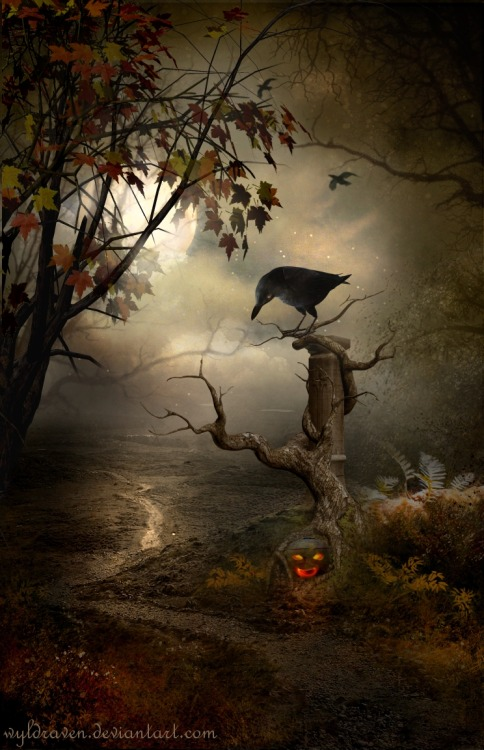 visualmindchatter:  Samhain by *wyldraven