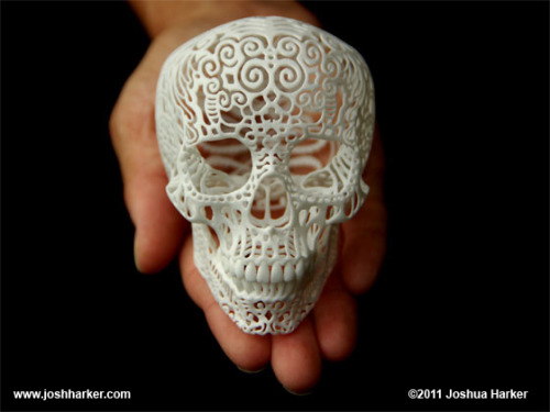 laughingsquid:  Crania Anatomica Filigre, Intricate 3D Printed Skull Sculptures
