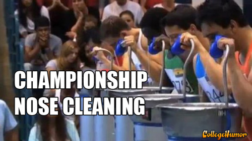 Championship Nose Cleaning - click to watch