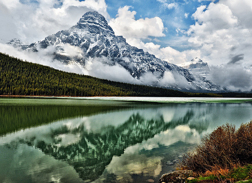 woodendreams:  (by Jeff Clow)