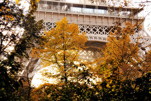France - Paris: Autumn in Paris (by John & Tina Reid)