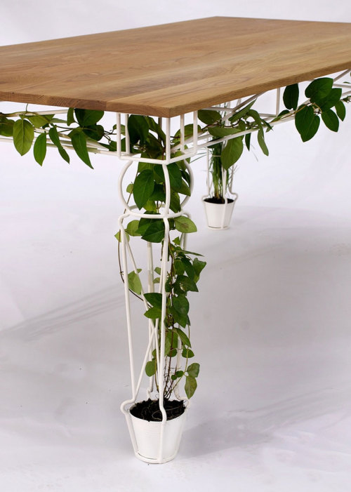 "sproutrobot:  Outdoor garden, indoor garden. Inside-your-furniture garden…  On show at Designersblock during London Design Week 2011 is ""Plantable,"" a table which aims to reintroduce nature back into the experience of gathering, preparing, cooking and eating a meal. Designed by London-based studio Jailmake  (Liam Healy and Jamie Elliott), the table offers places for plants to grow within the base of each of the four legs, which are designed to allow vegitation to intertwine between its structure."