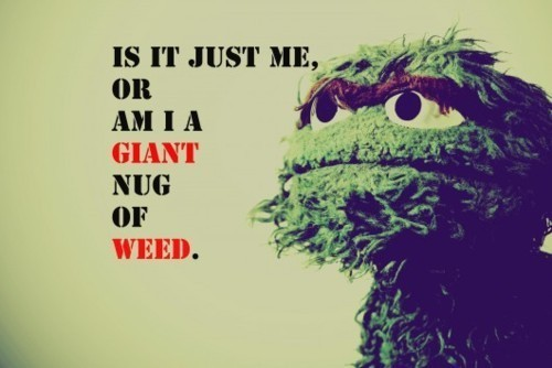 culturerevo:  Oscar The Grouch #swag