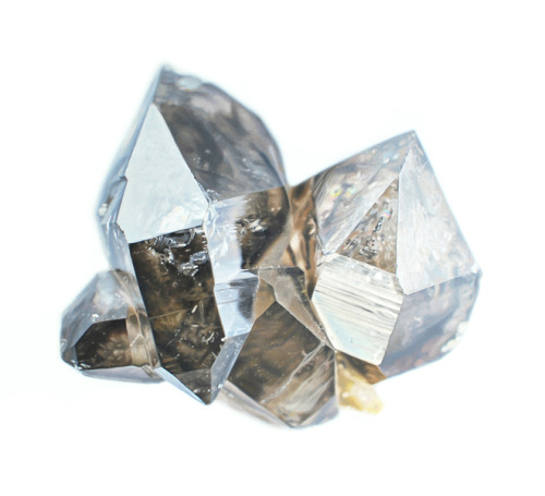 image: { Carly Waito }: Smoky Quartz  There's another reason I think popularizing science is important, why I try to do it. It's a foreboding I have — maybe ill-placed — of an America in my children's generation, or my grandchildren's generation, when all the manufacturing industries have slipped away to other countries; when we're a service and information-processing economy; when awesome technological powers are in the hands of a very few, and no one representing the public interest even grasps the issues; when the people … have lost the ability to set their own agendas, or even to knowledgeably question those who do set the agendas; when there is no practice in questioning those in authority; when, clutching our crystals and religiously consulting our horoscopes, our critical faculties in steep decline, unable to distinguish between what's true and what feels good, we slide, almost without noticing, into superstition and darkness. — Carl Sagan