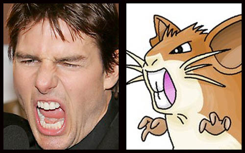 angelfuck:  lol'dTom Cruise / Raticate