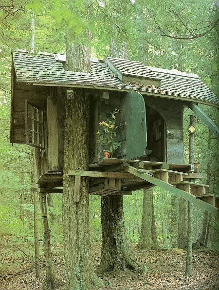 lovely treehouse