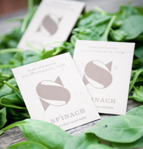 No1 Spinach Seeds - Allotinabox (Buy)   British, recyclable, and tasty. Allotinabox is ideal for City dwellers wanting to grow their own, or if you just want to ogle at the beautiful vintage packaging.