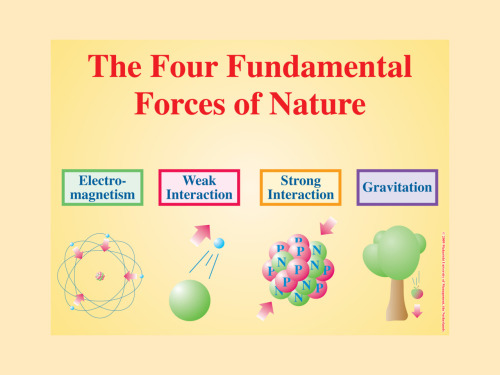 quantumaniac:  The Four Fundamental Forces.  In Physics, the fundamental forces describe how particles interact with one another. The four known forces are the Strong Nuclear Force, the Weak Nuclear Force, Electromagnetism and Gravitation. These forces are considered fundamental because they cannot be explained in terms of any other force. The quest to bring together the four forces into a single entity (a TOE - Theory of Everything) is the pursuit of many physicists, but so far has proven to be a challenging task, which even eluded Einstein himself!  Strong Nuclear Force   Strength: 1 (All strenghts to follow are relative to this one.) Range: 10-15 m The Strong Nuclear Force, aptly named because it is the strongest of the four forces, is responsible for everything that we know today. This force holds together the protons and neutrons together in the atomic nucleus despite the particles' urge to repel each other. The mediators of the Strong Nuclear Force are particles called Gluons, which also hold quarks together to form particles such as the proton.  Electromagnetism   Strength:  1⁄137  Range: Infinite The Electromagnetic force is responsible for, as you can probably tell, electricity and magnetism. This force is mediated by Photons, massless particles that are the basic unit of light. You probably know that opposite charges attract, and like charges repel - this is a direct result of the Electromagnetic force. When a particle attract or repels another particle, what actually happens is that photons are exchanged, and the release or absorption of the photon's energy causes the particle to come closer or dart away. This force is responsible for many everyday, observable occurrences. The Electromagnetic force is why your computer isn't falling right through your desk right now; because the atoms in your computer and in the desk resist being displaced from the exchange of photons.  Weak Nuclear Force   Strength: 10-6 m Range: 10-18 m The Weak Nuclear Force is the most unfamiliar to us in our everyday lives. However, it is the force that is responsible for radioactive decay and hydrogen fusion in stars. The mediators of this force are the massive W and Z bosons. This force is also capable of changing the flavor of a quark, i.e. changing one type of quark into another.  Gravity  Strength: 6 * 10-39 m Range: Infinite Gravity, of course, is the most familiar of all the fundamental forces. However, is it also the least likely to compromise, as it has proven extremely difficult to associate gravity into the other forces into a Theory of Everything. In fact, the modern model of the Universe, the Standard Model, does not even include gravity because of this! In short, Gravity is a force by which physical bodies attract each other. In more precise terms, Gravity is an inverse square law with incorporates the masses of two bodies, the gravitational constant, (6.67300 × 10-11 m3 kg-1 s-2,) and the distance separating the bodies. Gravity is most observable by providing weight to objects and what causes objects to fall to the ground when dropped. Gravity also causes coalesced matter to remain intact, thus accounting for most of the macroscopic objects in the Universe. Every object exerts a gravitational force on every other object, although the force becomes extremely weak at large distances.  To show the weakness of Gravity compared with the other forces, consider this. After running a comb through your hair several times, place it close to a flat piece of paper. If done correctly, the paper should lift up and touch the comb. An entire planet's gravity was required to keep that piece of paper down, but a simple comb with a few charged particles was able to pick it up!