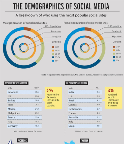 Demographics of Social Media Users (infographic)