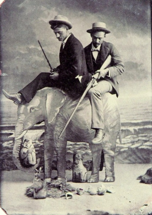 Tintype of two gentlemen hunting from atop a elephant (c.1890)
