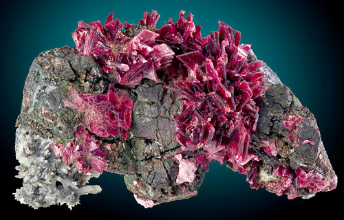 mineralia:  Erythrite with Quartz from Morocco