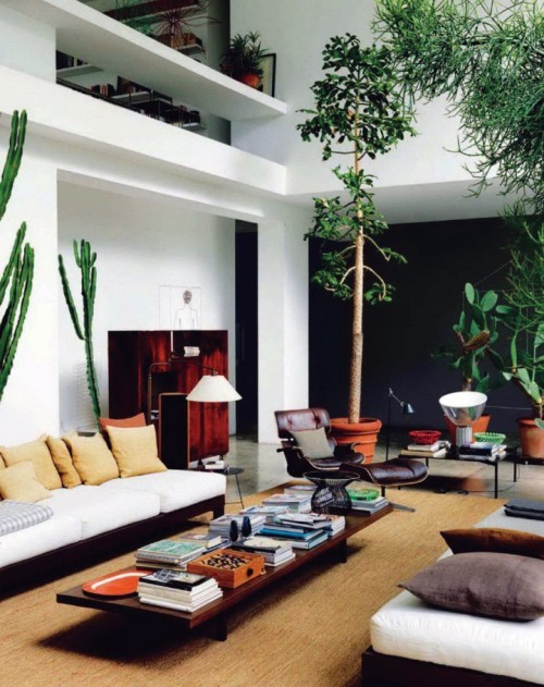 cacti house no. 2 - plants indoors, long sofas and equally long coffee table, lots of books