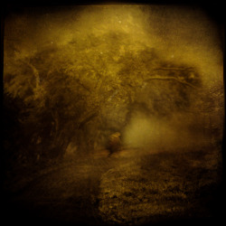 Forgotten Way by *intao