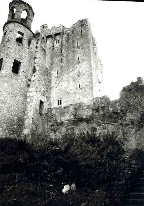 scapeography:  Blarney Castle  Love this place.