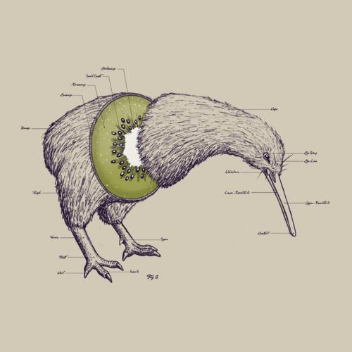 Ambiguidade: Kiwi