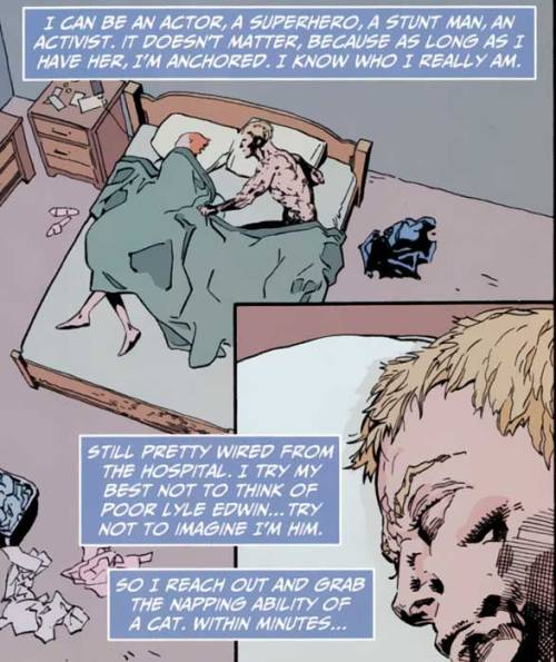 Animal Man in a nutshell (Animal Man #1 - 2011)