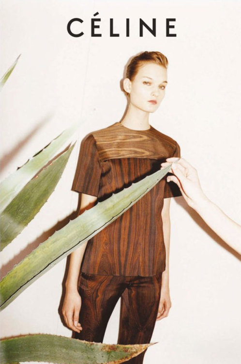 WOOD is the new PRINT femmelink:  Céline AW'11 By Juergen Teller.