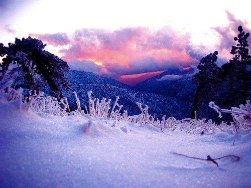 prevums:  Snow Sunset by ms4jah on Flickr.