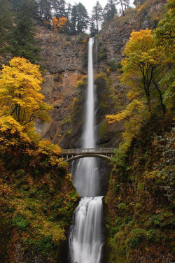 Autumn at Multnomah Falls by Just Peachy! on Flickr.