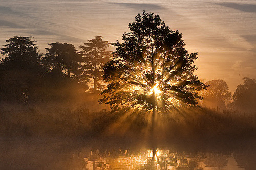 September Sun (by Kevin Day)