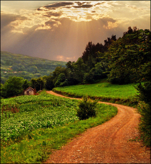 agoodthinghappened:  Path-late summer landscape by Katarina 2353 on Flickr.