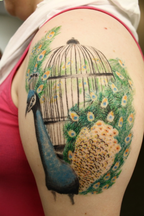 "my 3rd tattoo. i got a peacock because my best friend growing up lived on a farm and they had peacocks and whenever one would go missing i would ask her dad why he didn't keep them in cages so that they wouldn't run away and he always said the same thing ""sweetheart, they are too beautiful to be kept in a cage."" this brings back so many memories and it is a reminder that we are all too beautiful to be caged. tattoo done at Mean Street Tattoo in Syracuse, New York."