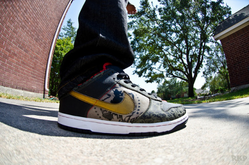 Nike SB SBTG on Flickr.wdywt