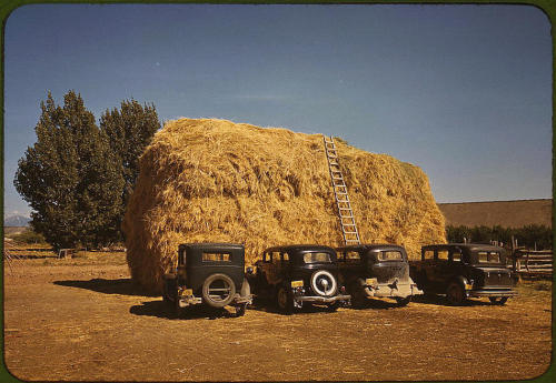 Hay stack and automobile of peach pickers. Delta County, Colorado,  1940. Reproduction from color slide. Photo by Russell Lee.