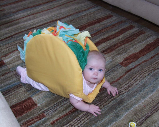shamiart:  This is a baby dressed as a Taco