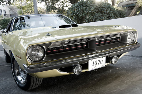 joakomauna:  1970 Plymouth Hemi Cuda  sorry for the carlove this afternoon gaiz.