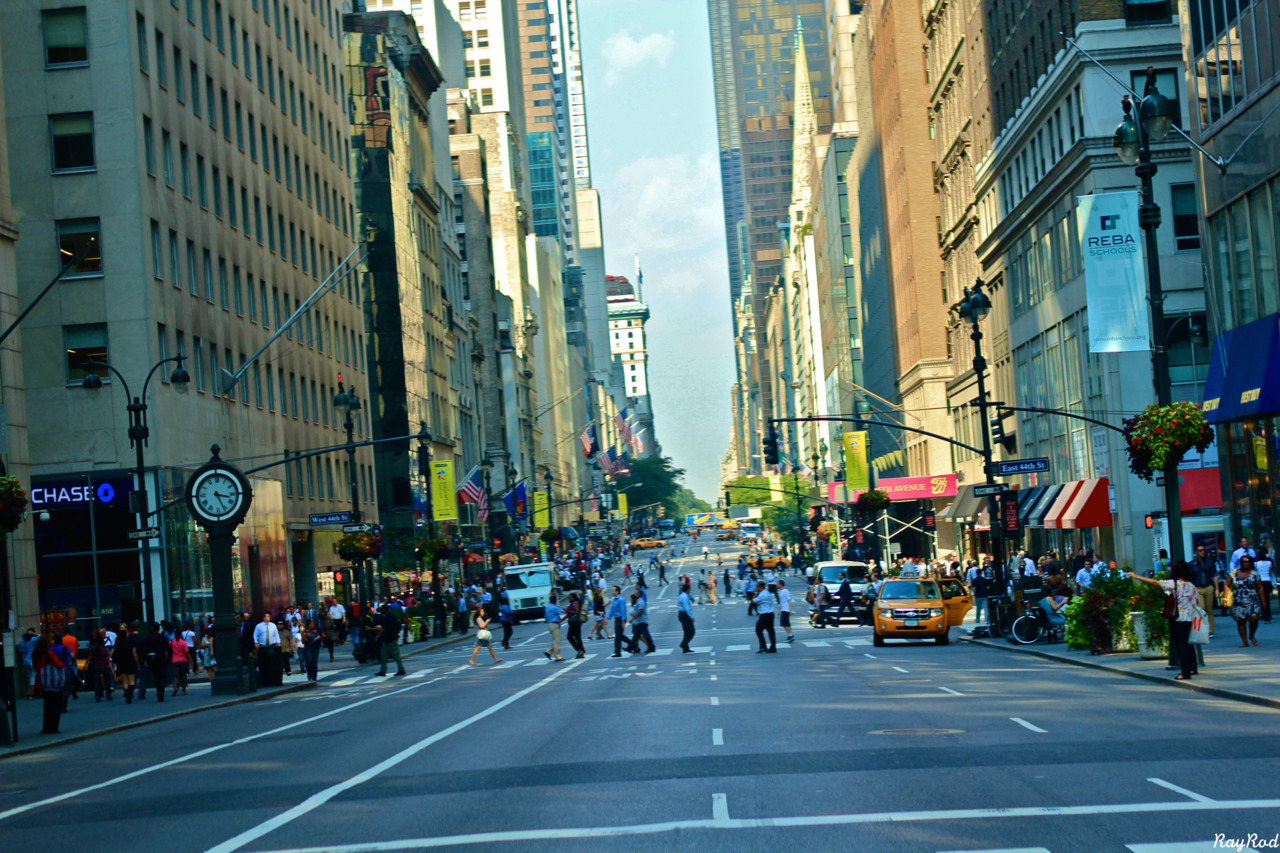 productiveray:  5th Avenue.   my city ♥
