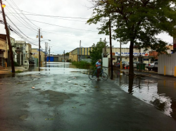 The day after Irene was for exploring the changed landscape. Flooding was pretty severe.