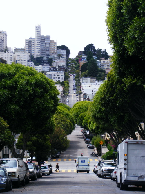 The view up Lombard Street. It gets pretty hairy at the top!