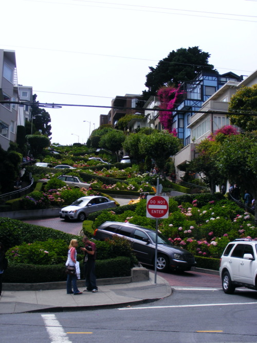 "Lombard Street, ""the crookedest street in the world."" It has 8 switchbacks in one block! I was very happy to not be driving down it."