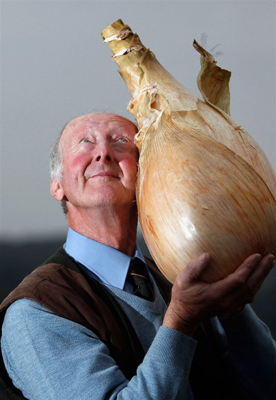 "archiemcphee:  ""Gardener Peter Glazebrook poses for photographers with his world record breaking onion at The Harrogate Autumn Flower Show on September 16 in Harrogate, England. Peter Glazebrook from Newark, Nottinghamshire claimed a Guinness World Record with his giant onion weighing 8.150kg."" Photo by Christopher Furlong [via Design You Trust] Never has one man looked so happy to cuddle an onion."