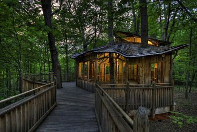 -cityoflove:  Treehouse in Mount Airy, Ohio via haglundc
