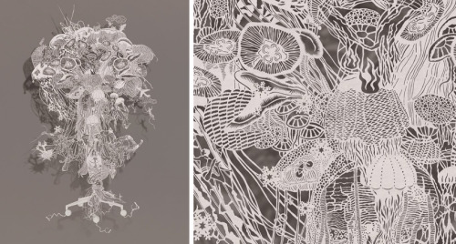 Beautiful paper cuts by Bovey Lee.