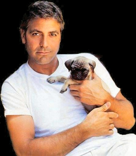 George Clooney. Holding a puppy. I'm not really sure that