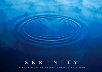 """Serenity: The future belongs to those who believe in the beauty of their dreams."""
