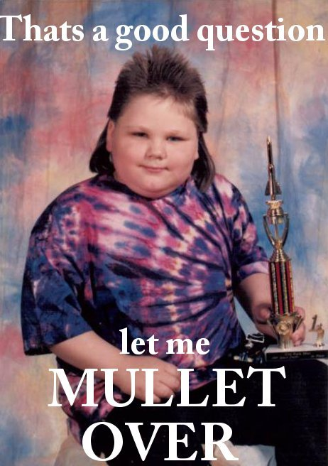 cajunboy:  uproxx:  First Place Mullet Is Taking the Internet by Storm  This kid looks like he ate Billy Ray Cyrus and a hippie.  GANGSTA