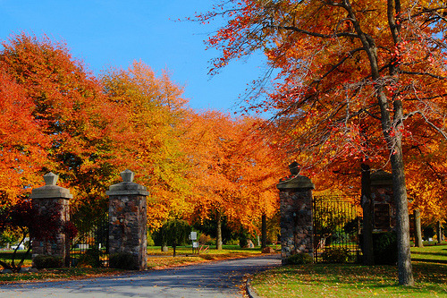 Blazing Autumn colors in Northeast Ohio (by p.csizmadia)