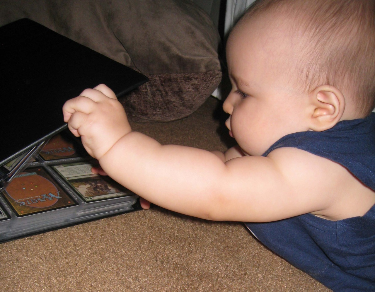 mtgfan:  plnsfrstmtn:  my son, sebastien, browsing rares.  I remember me and my friends let a baby try to choose a color of Magic by shoving one of each basic land in front of him. He tried to eat all of them except for the Island, which he cradled for a bit. =D