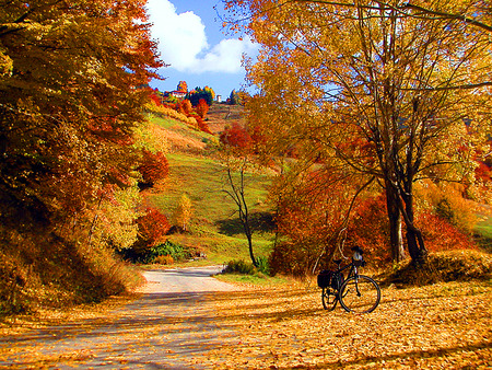 itsgoodnature:  Autumn in Rhodope