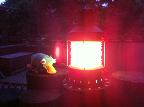 disneyapprentice:  Oh, there you are Perry. Waiting for Fantasmic!