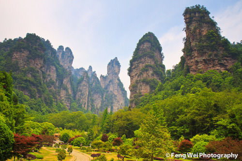 Towering stone peaks in Zhangjiajie, China by Feng Wei Photography (travelling… slow response) on Flickr.