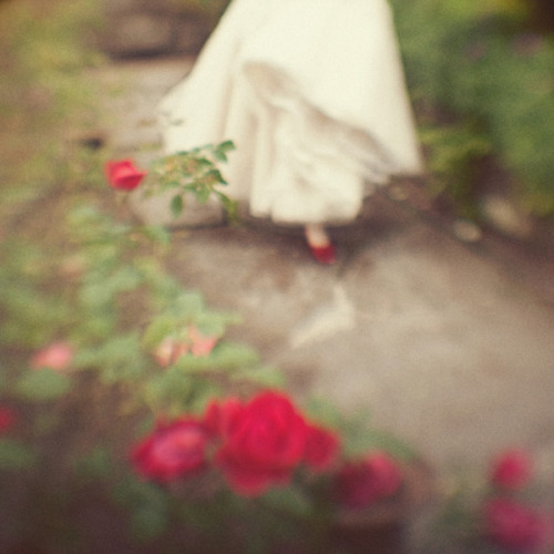 quirkywhimsy:  I hurried down the rose path on a secret rendez-vous…