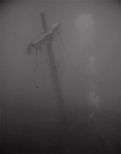 the front of the ship's mast.this wreck is called Mirna-M.the deck starts around 20 meters.mirna-m sinked at 1994 at the peninsula of turgutreis bodrum.vessel's cargo was alive animal.luckly the vessel wasnt loaded.as my guess the vessel was deliberately sunk to get money from insurance company.who knows how it ended.knowingly or unknowingly the vessel sunk on other cargo wrecks which were ancient.this beautiful dive site is prohibited for diving.when ever i dive at yassı island it shivers me..there is alot to say abouth this place and this wreck and the ones laying under it ,i tried to keep it short. photo from 5 m.  yassı island,tugutreis-bodrum.